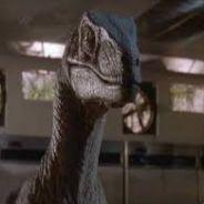 A_Velociraptor