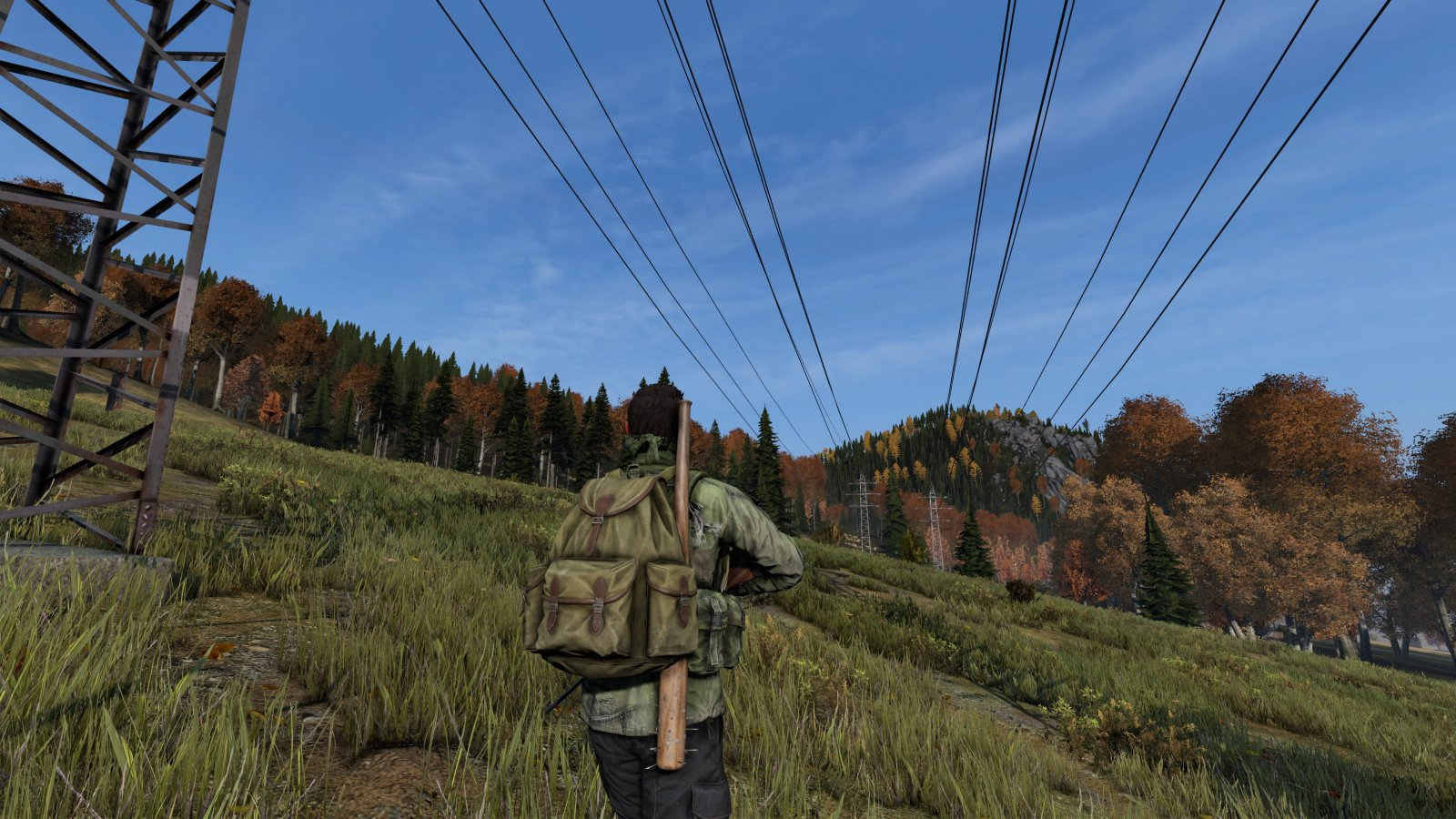 Along the powerlines