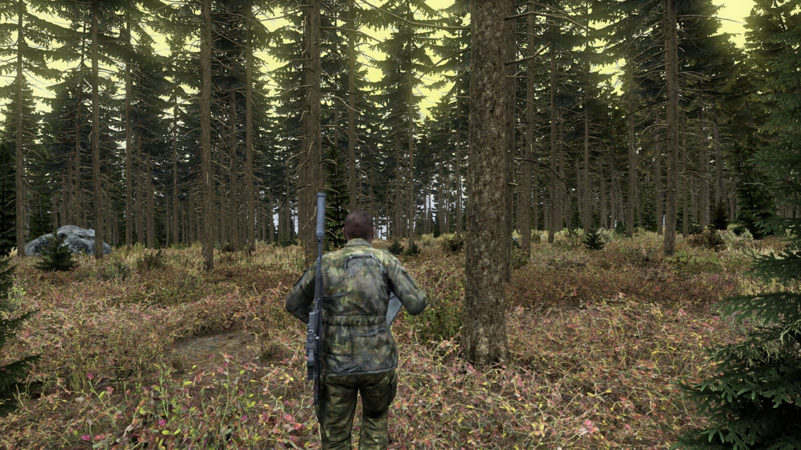 Forest 0.62