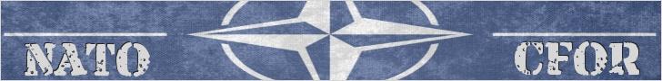596ec2c020bd4_NATOCFOR.png.934cd2e3c8827d3ff82cab4746c53a7f.png
