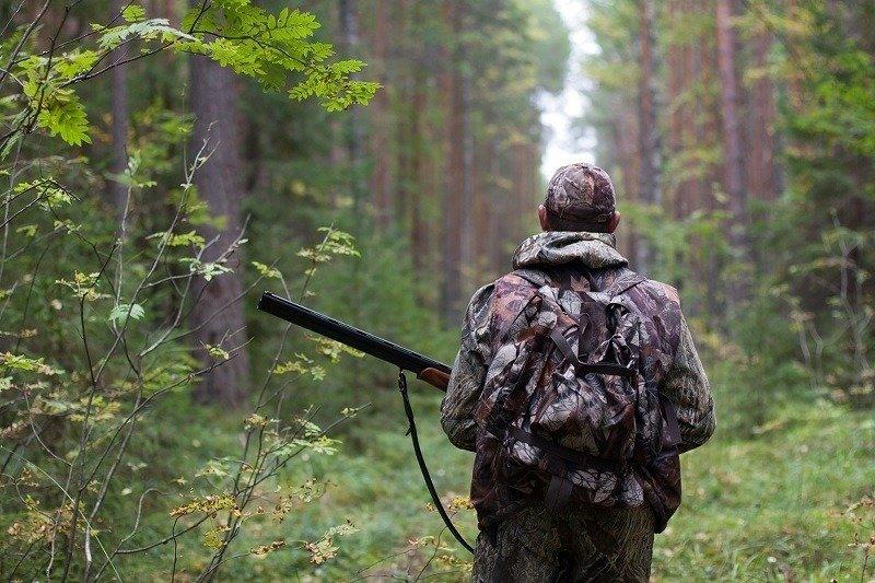hunter.jpg.ac6400005c11e2eb9e5498b554d58aaf.jpg