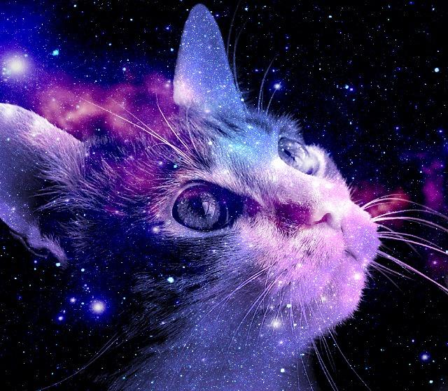 a_see_space_of_purple_by_kkpaw-d496c79.jpg.e8a49a391094e06cf779efcdfe946a45.jpg