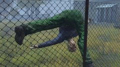 Sad Fence Zombie