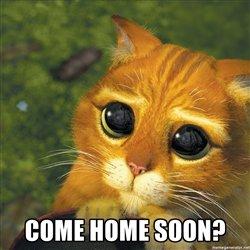 come-home-soon.jpg