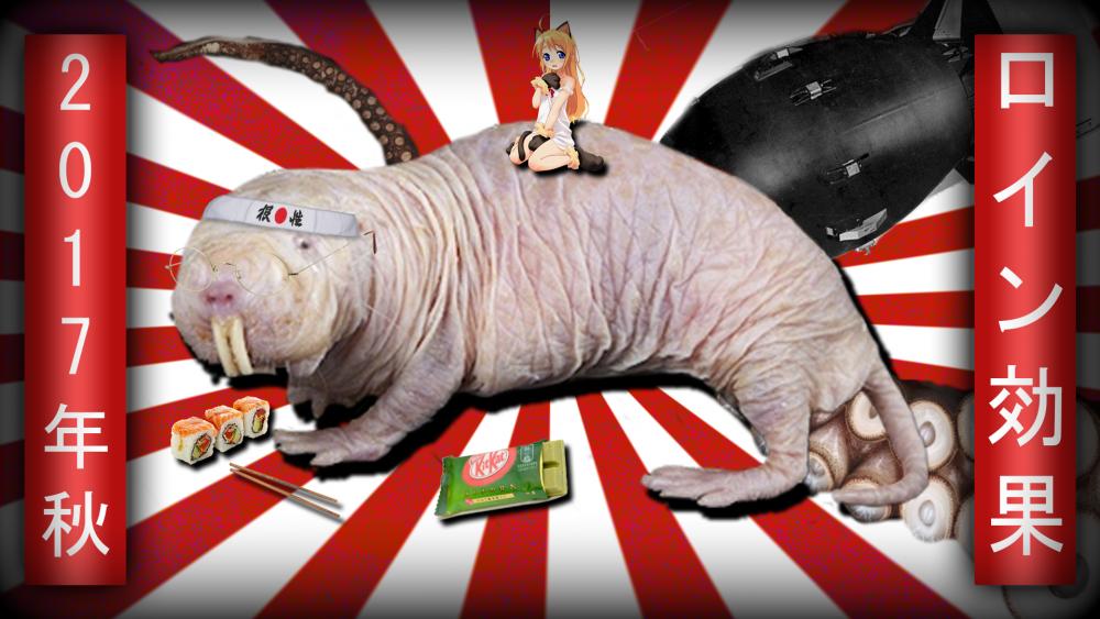 mole-rat.png
