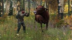 Man vs Cow