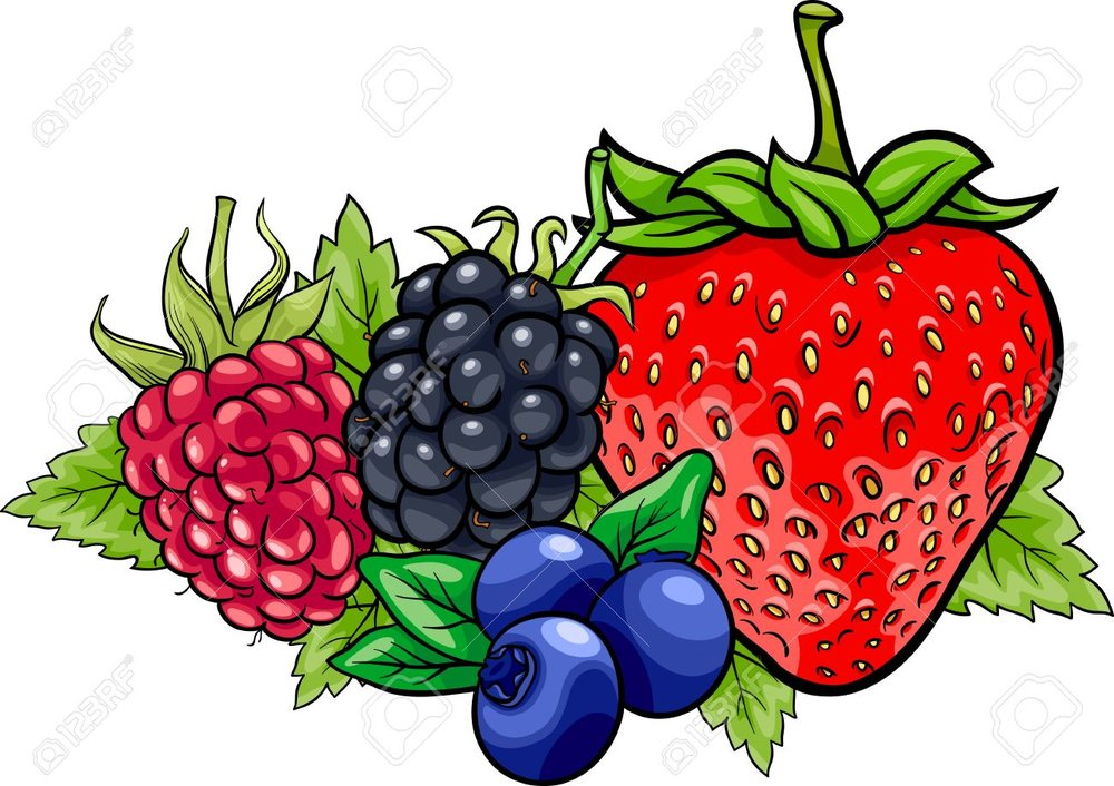 20171989-Cartoon-Illustration-of-Four-Berry-Fruits-like-Blueberry-and-Blackberry-and-Raspberry-and-Strawberry-Stock-Vector.thumb.jpg.e72932aa75a0369f2f403507f0a6bfc3.jpg