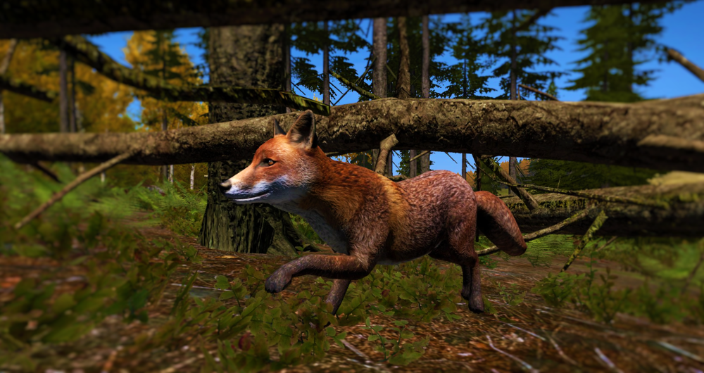 fox.thumb.png.51c72a9acb94e3f8f496b59bfdcb2644.png