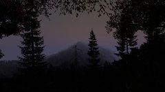 Dark dayz..