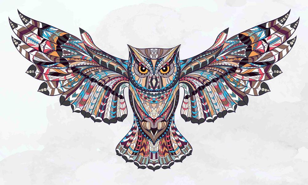 Owl-Flying-colored.jpg