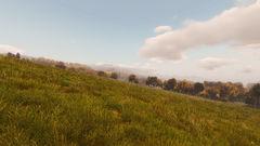 Fields of Chernarus