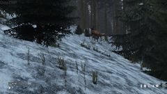 deer in snow 1 - DayZRP