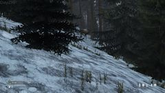 deer in snow 2 - DayZRP