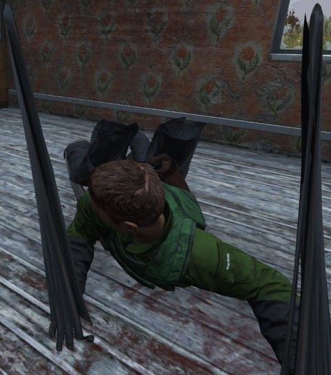 Character Spaghettified 1 0 1 update - Troubleshooting - DayZRP