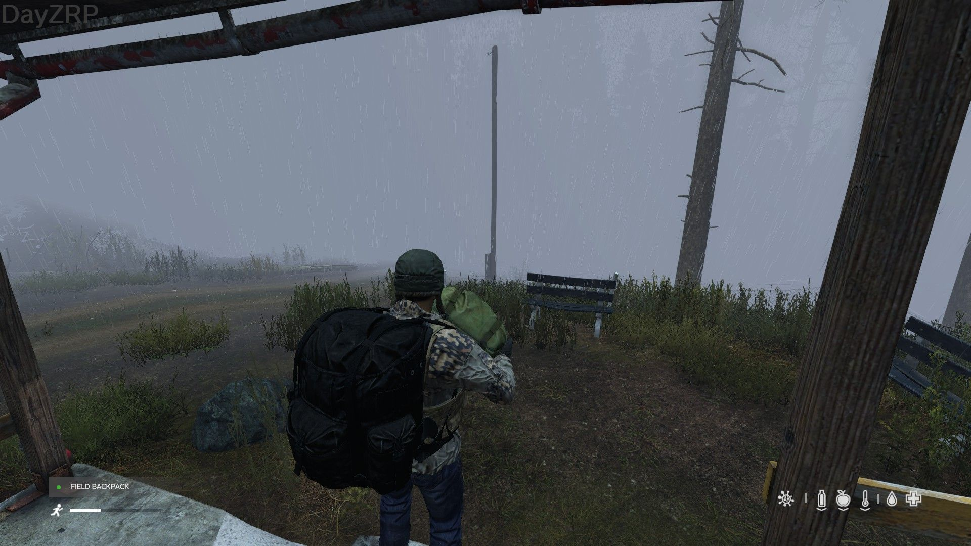 heavy rain and fog dayzrp.jpg