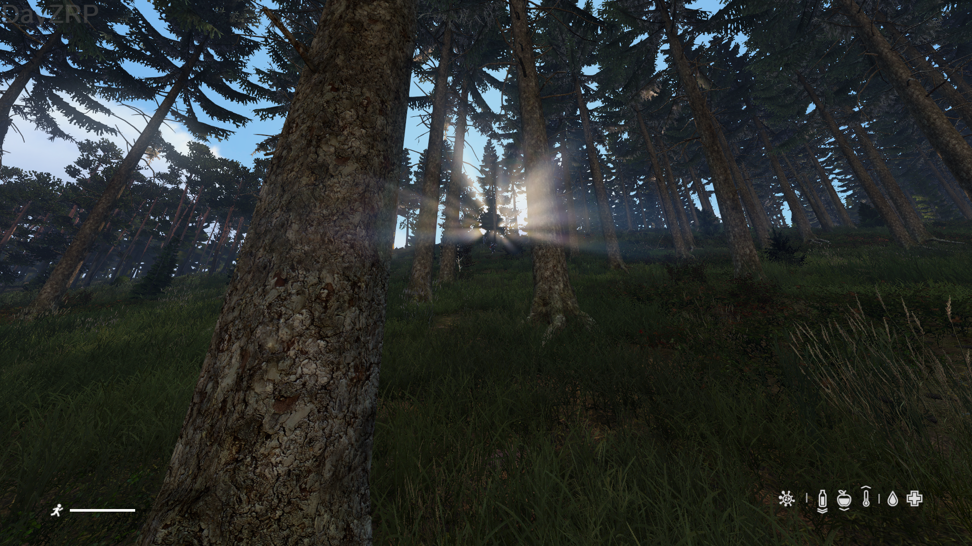 DayZ_Screenshot_2019_03.13_-_19_39_15_40.png.17f8bfb2336e5a9d2cd897022f7fe690.png