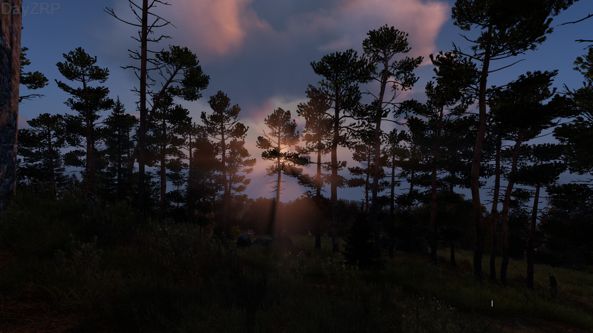 DayZ_Screenshot_2019_04.03_-_01_11_26_64.png