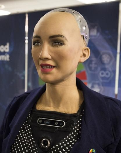 1200px-Sophia_at_the_AI_for_Good_Global_Summit_2018_%2827254369347%29_%28cropped%29.jpg