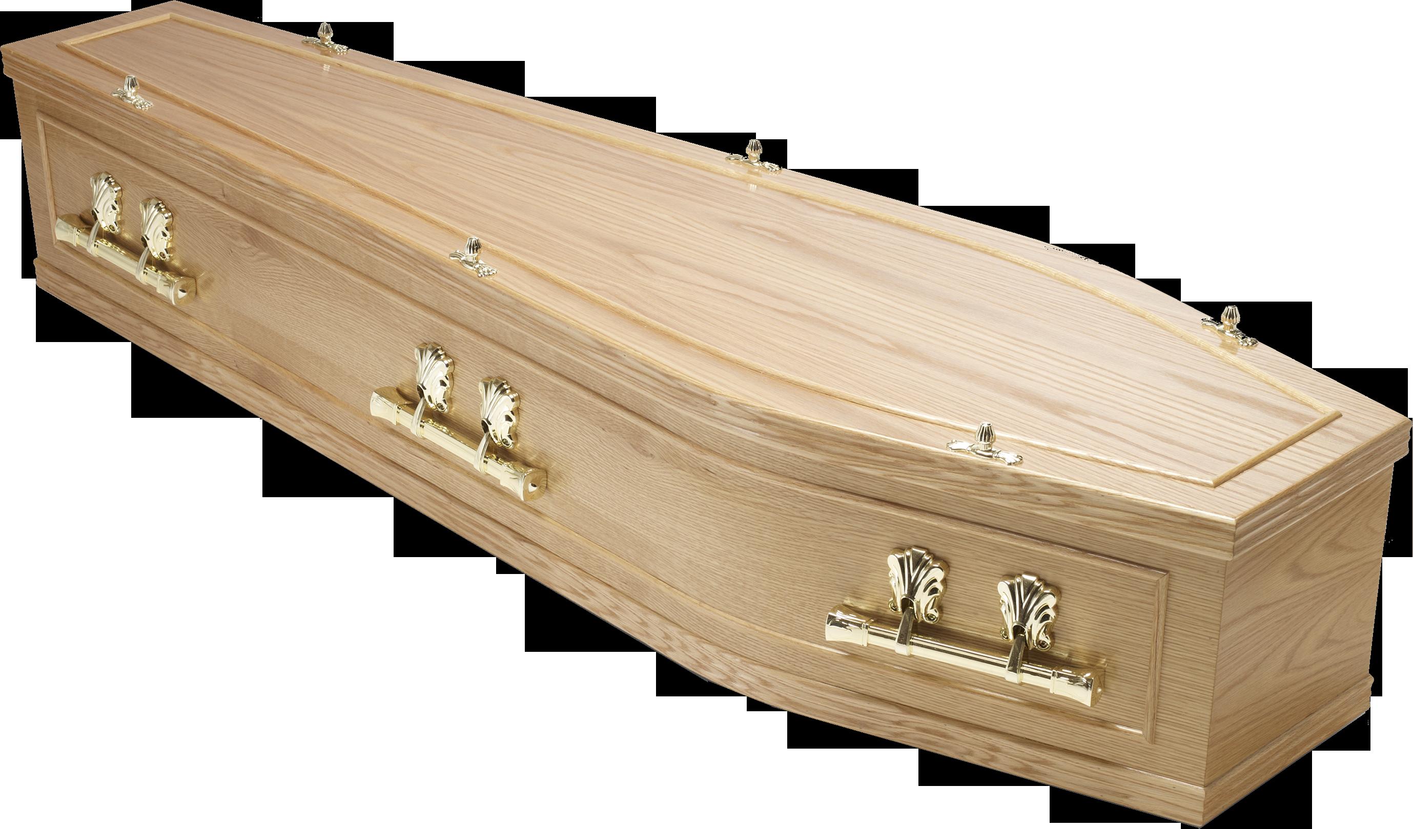 Coffin.png.e9759275b023e56f73e53f071401f542.png