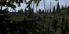 Base in the woods