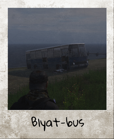 bus.png.60a9b3392d439505ae221733135cde18.png
