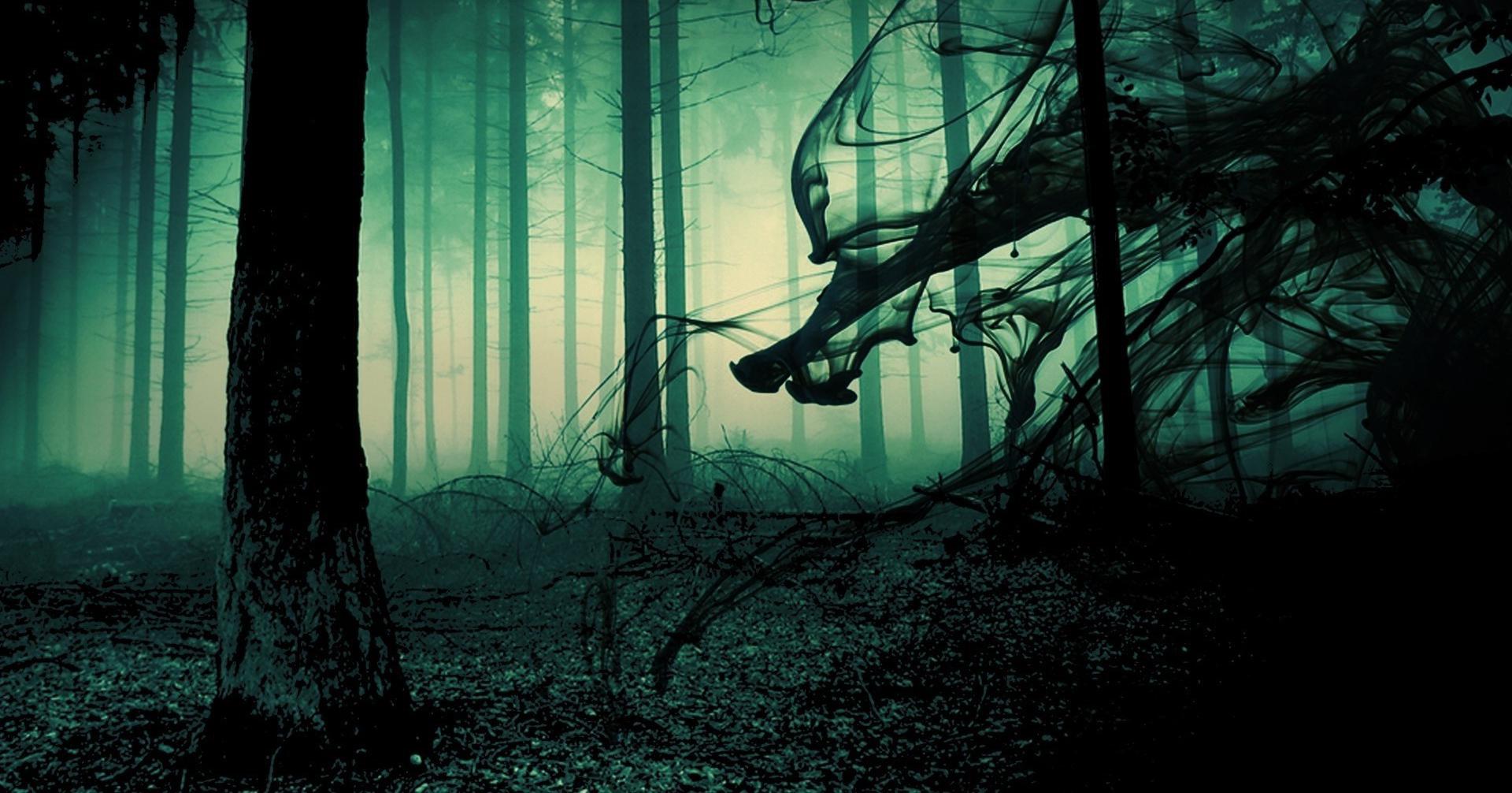 creepyforest.png.7dc8f2c3e16eecb7d3e60abd903f13f6.png