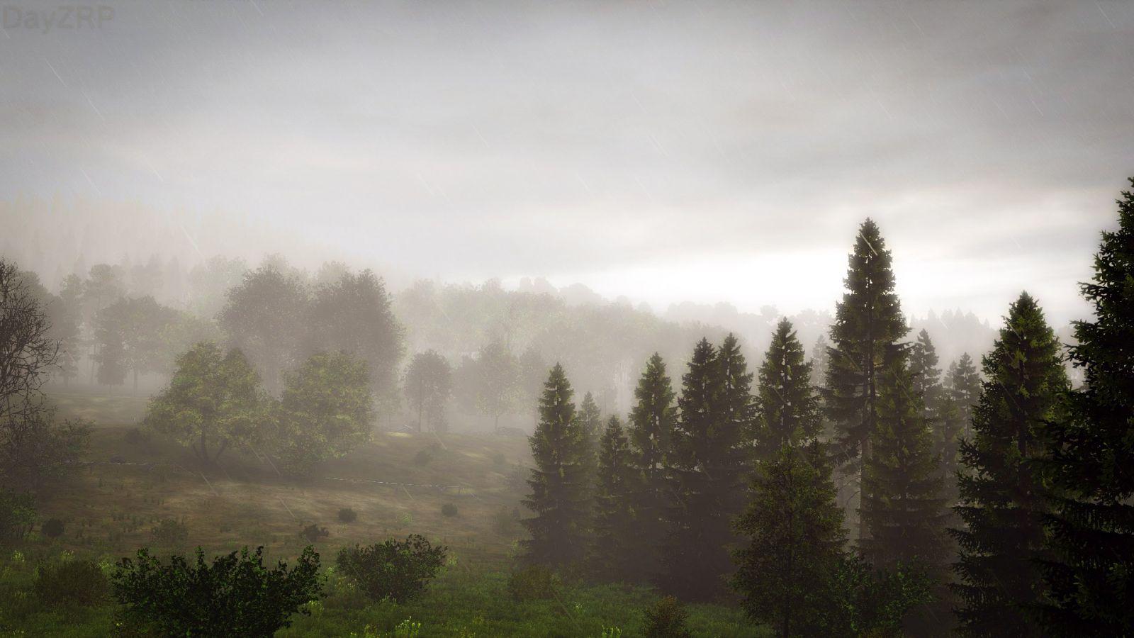 Rainy Mist in the Morning