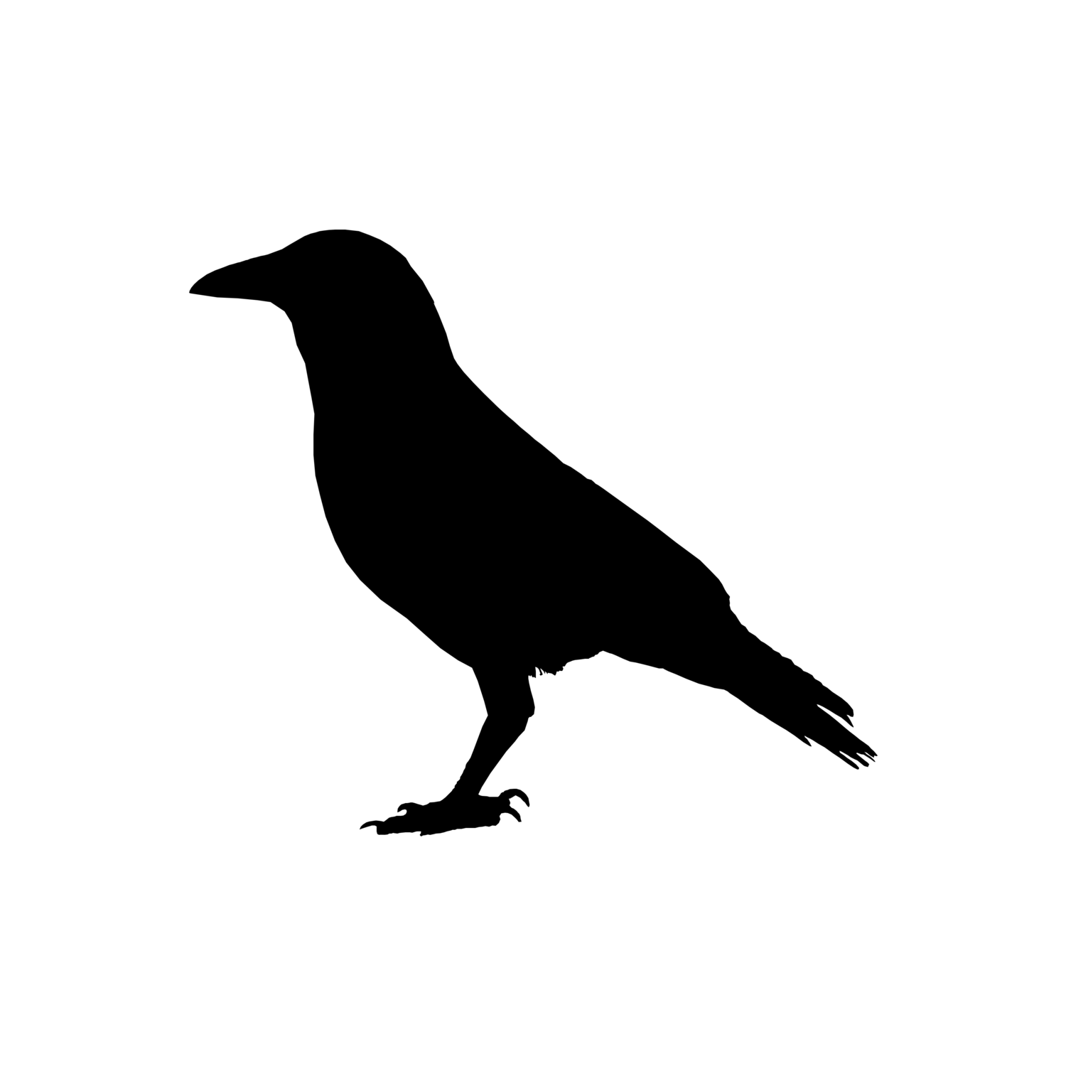 crowy.png.3095ef3ffb499aa2863e038676c0664e.png