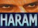 haram.png.9d1d90b96aed6a9c8cc1a48ce32b7f1b.png