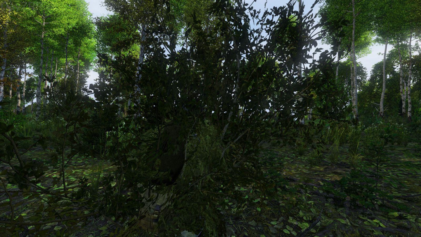 I am a bush!
