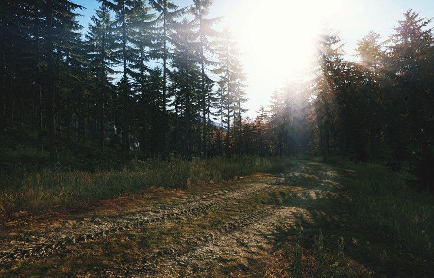 Dirt Trail