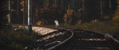 Traintrack wolf