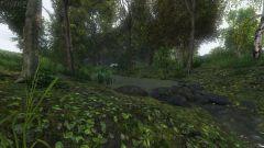 Bumbling Creek
