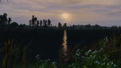 Lake N Chill