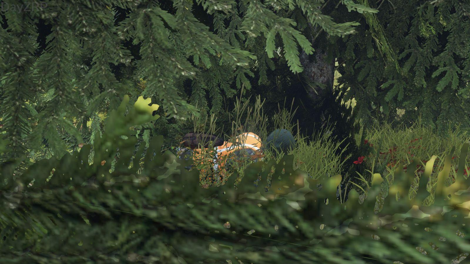 """""""jon in the bush"""""""