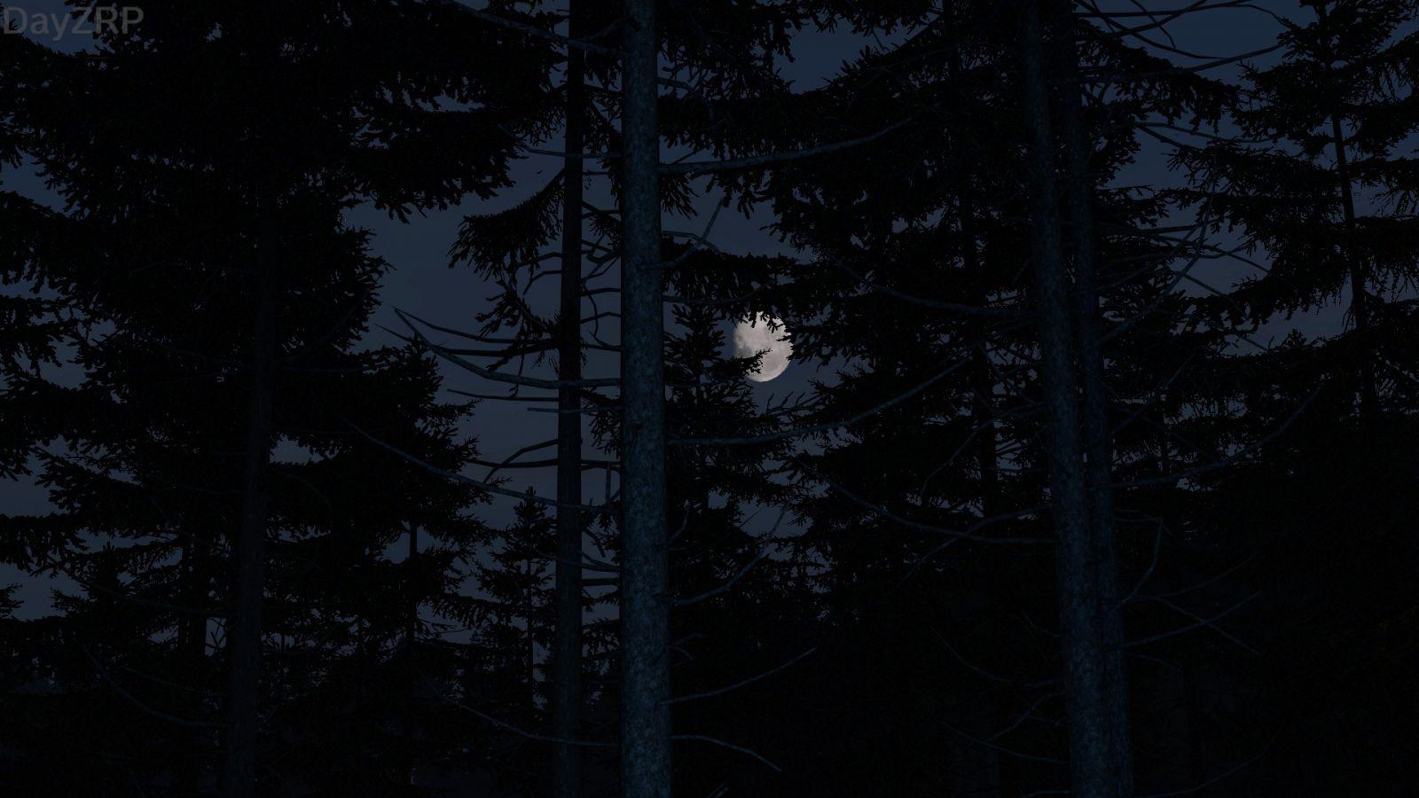 The hidden moon