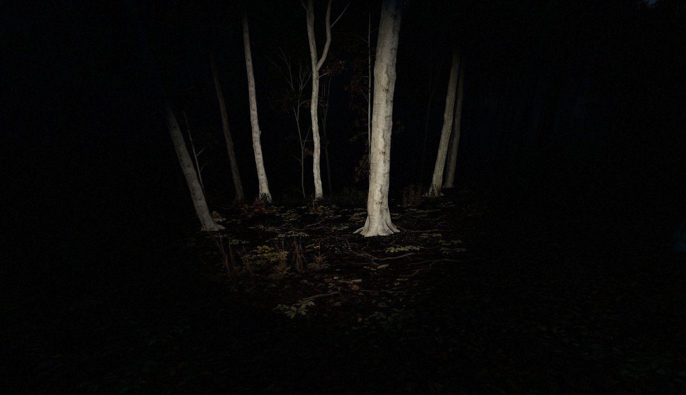 Dangers in the dark