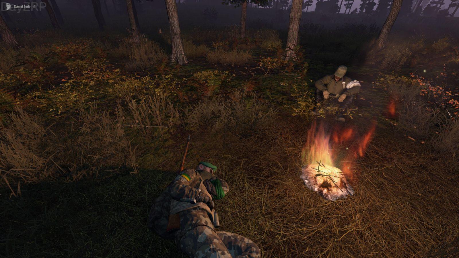 Allies & friends sharing a fire