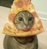 PizzaCat00