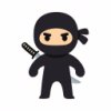 Ninja_dust