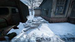 Frozen Pile of Bodies