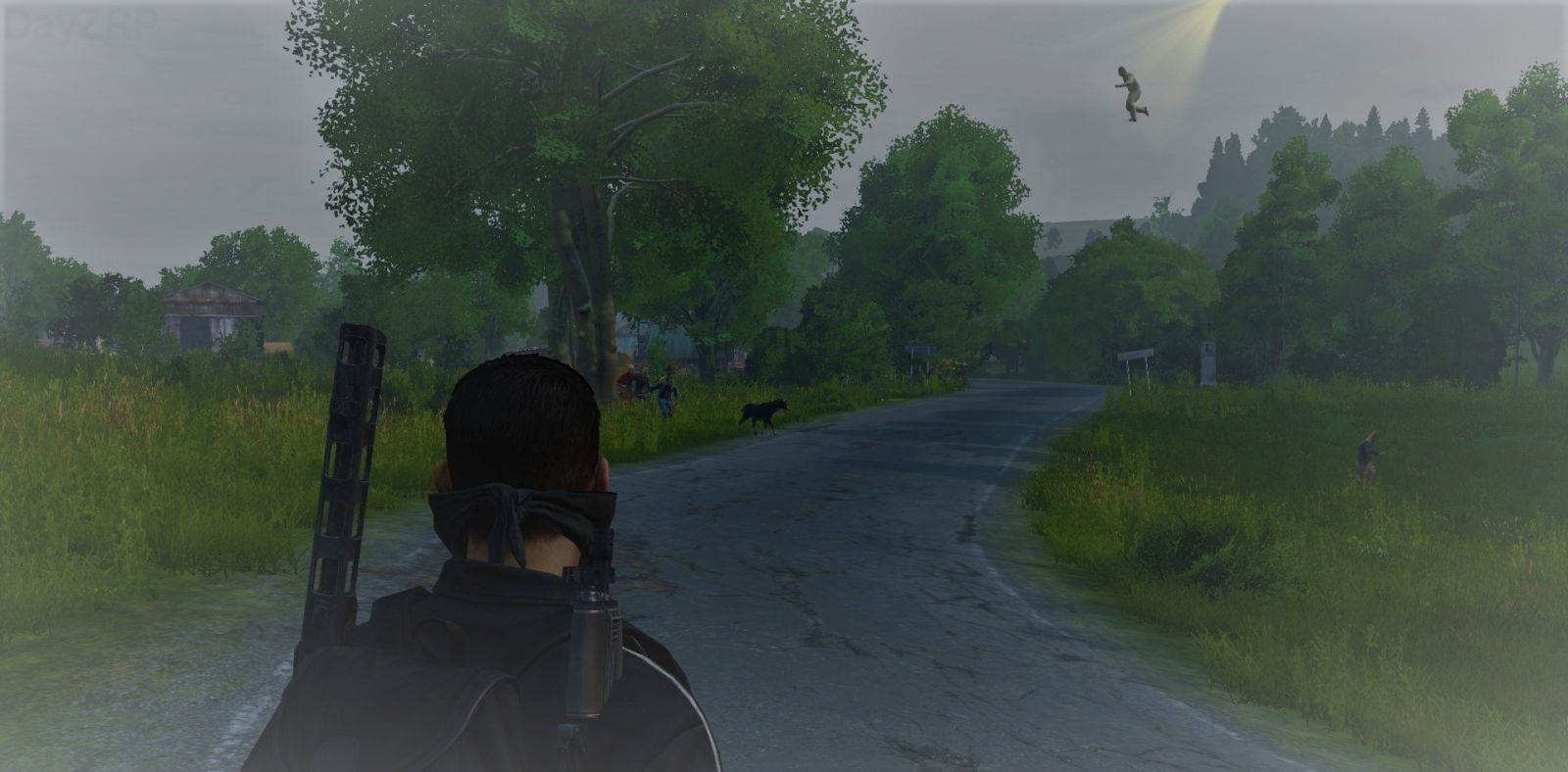 DayZ Zombie Jesus coming down for his annual goat sacrifice xD