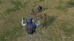Killed a Stag deer - Posing it