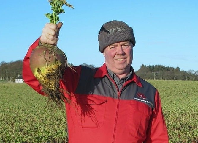 George-Gray-turnips-e1420463226698.jpg