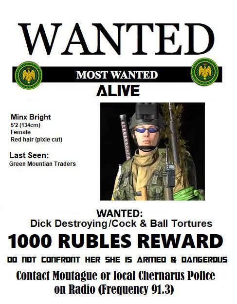 Wanted poster XD.jpg