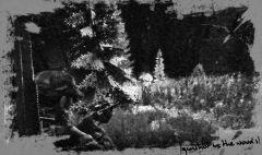 gunshot in the woods.jpg
