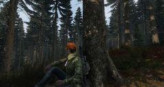 Hunting Break