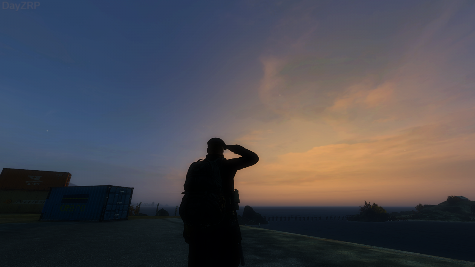 A salute to the Dying Light