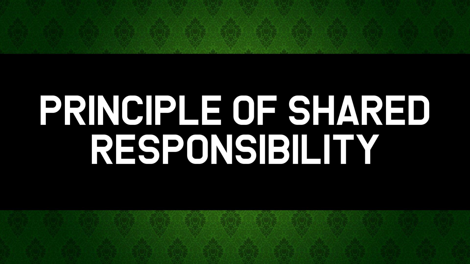 630658524_PrincipleofSharedresponsibility.png.a890516afbf1e32b7142d6fc6ae4dfa8.png